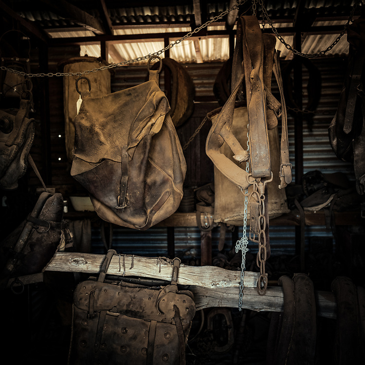 Some of David Pollock's collection at Wooleen Station in the Murchison region of Western Australia.