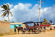 Horses and carts in Gibara, Holguin, Cuba.