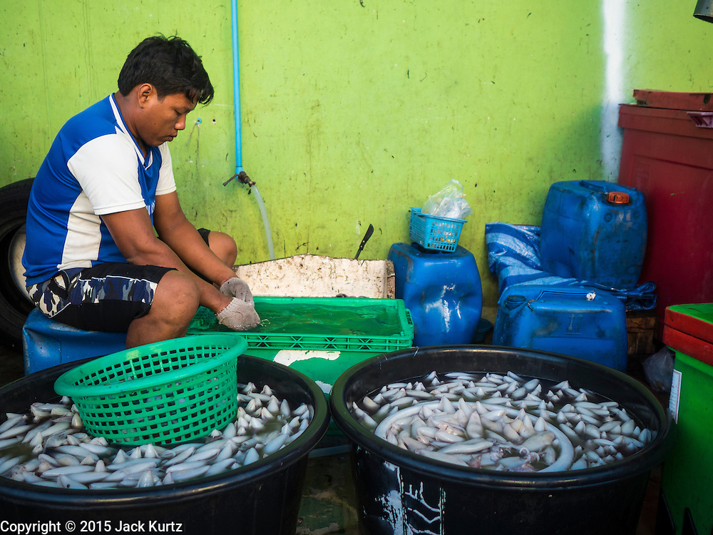 "11 JUNE 2015 - MAHACHAI, SAMUT SAKHON, THAILAND: A Burmese migrant laborer at the Talay Thai market in Mahachai cleans squid. Labor activists say there are about 200,000 migrant workers from Myanmar (Burma) employed in the fishing and seafood industry in Mahachai, a fishing port about an hour southwest of Bangkok. Since 2014, Thailand has been a Tier 3 country on the US Department of State Trafficking in Persons Report (TIPS). Tier 3 is the worst ranking, being a Tier 3 country on the list can lead to sanctions. Tier 3 countries are ""Countries whose governments do not fully comply with the minimum standards and are not making significant efforts to do so."" After being placed on the Tier 3 list, the Thai government cracked down on human trafficking and has taken steps to improve its ranking on the list. The 2015 TIPS report should be released in about two weeks. Thailand is hoping that its efforts will get it removed from Tier 3 status and promoted to Tier 2 status.        PHOTO BY JACK KURTZ"