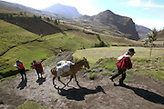 Making the long return trip from the weekly market in the valley, Orlando Ayme leads his father-in-law's horse, while his wife Ermelinda (center) carries the bundled-up baby and some of the groceries and Livia trudges along with her schoolbooks. Alvarito has literally run up the steep path ahead; like 4-year-old boys everywhere, he is a tiny ball of pure energy. Hungry Planet: What the World Eats (p. 109). (MODEL IMAGE RELEASED)