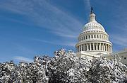 US Capitol during Washington DC Blizzard 2010