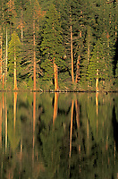 Scenic of trees reflected in Cascade Lake. Lake Tahoe, CA