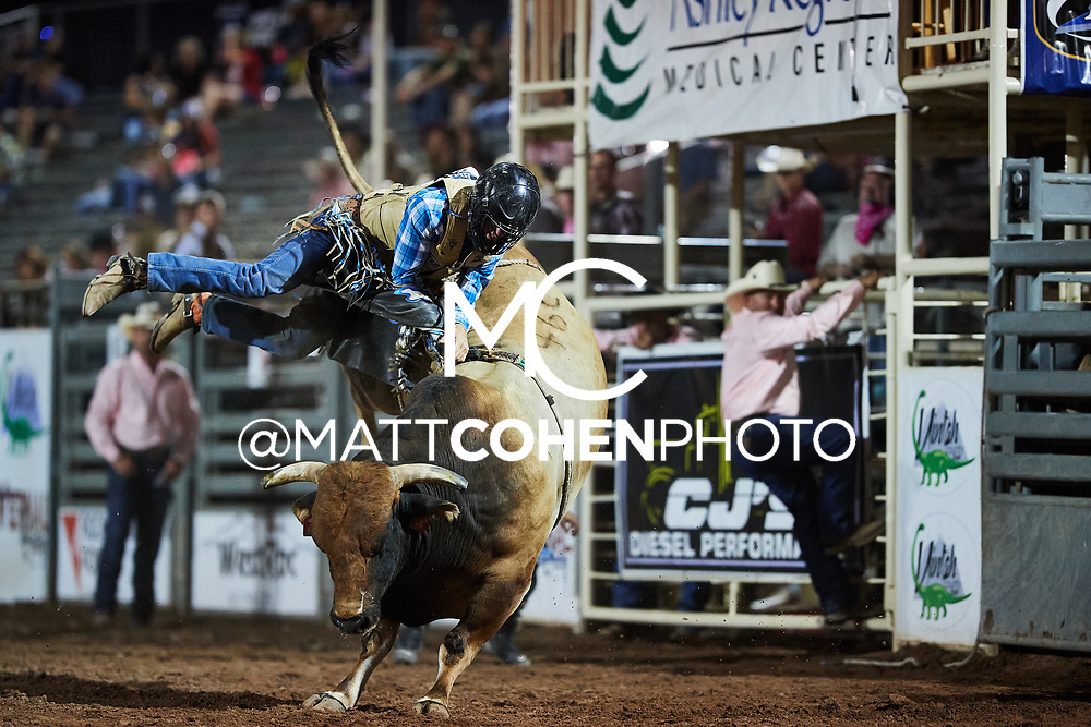 Chris Bechthold / 46C Cha Ching of Powder River, Vernal 2020<br /> <br /> <br />   <br /> <br /> File shown may be an unedited low resolution version used as a proof only. All prints are 100% guaranteed for quality. Sizes 8x10+ come with a version for personal social media. I am currently not selling downloads for commercial/brand use.