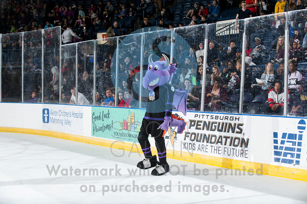 The Youngstown Phantoms lose 5-2 to Team USA during the school day game on March 27, 2019.<br /> <br /> Sparky
