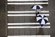 Pedestrians walk with umbrellas near Third Avenue on a rainy day in Seattle. (Erika Schultz / The Seattle Times)