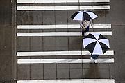 Pedestrians walk with umbrellas near Third Avenue on a rainy day in Seattle. (Erika Schultz / The Seattle Times)