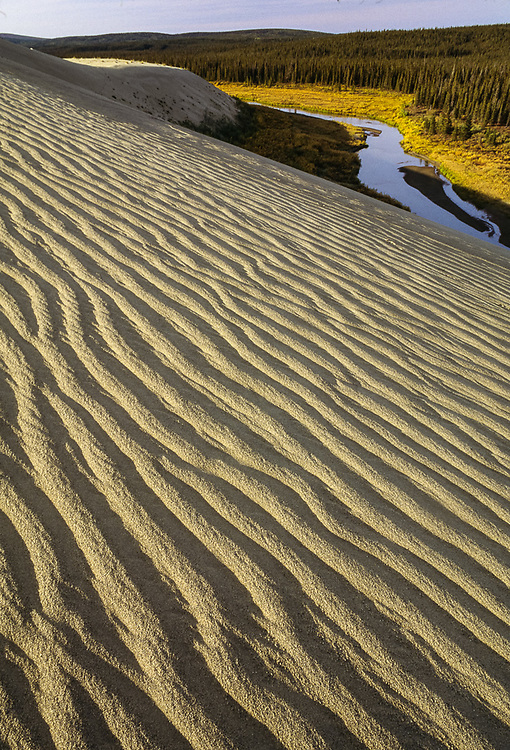 Kobuk Dunes Wilderness, Kavet Creek, September, Kobuk Valley National Park, Alaska, USA