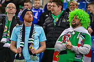 Northern Ireland fans during the UEFA European 2020 Qualifier match between Northern Ireland and Estonia at National Football Stadium, Windsor Park, Northern Ireland on 21 March 2019.