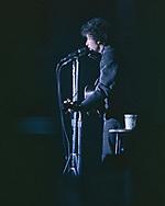 Bob Dylan in November 1965<br />photo by Dennis Brack bb72