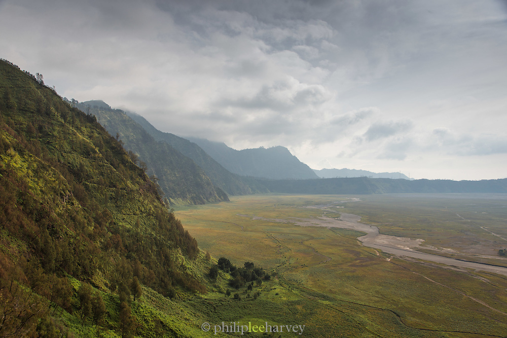 Vegetation and cliffs around Mount Bromo Crater and lava plain, Sea of Sand, Mt Bromo, Tengger massif, East Java, Indonesia, Southeast Asia