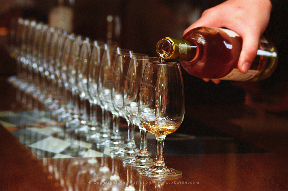 A long row of wine tasting glasses being filled with sauternes wine on a wooden table with a hand holding the bottle and pouring   at harvest time,  Chateau La Tour Blanche, Sauternes, Bordeaux, Aquitaine, Gironde, France, Europe