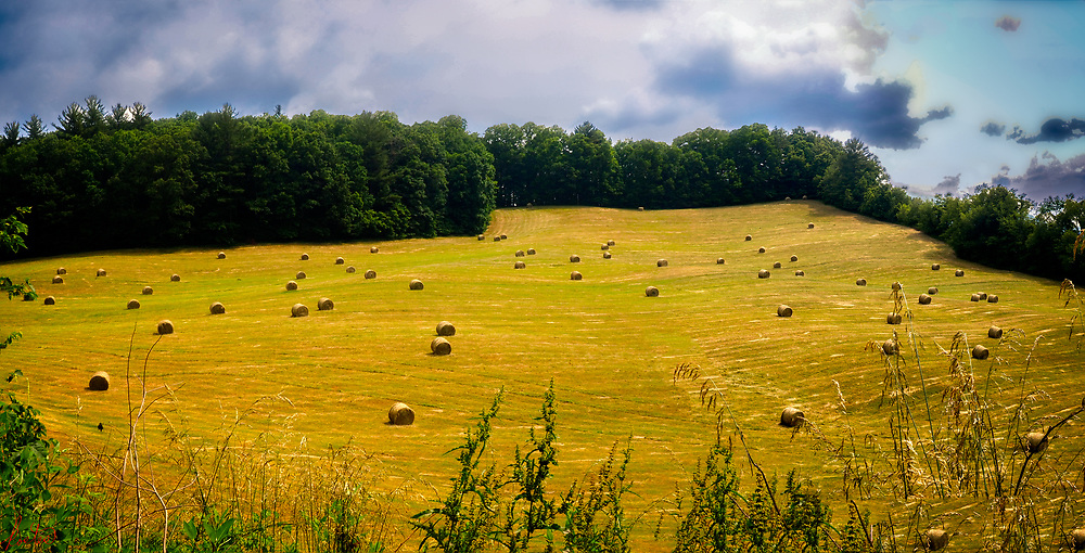 A hay filed with hay bales in late spring in the North Carolina mountains