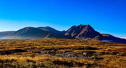 First light on Rannoch Moor, Highlands of Scotland<br /> <br /> (c) Andrew Wilson   Edinburgh Elite media