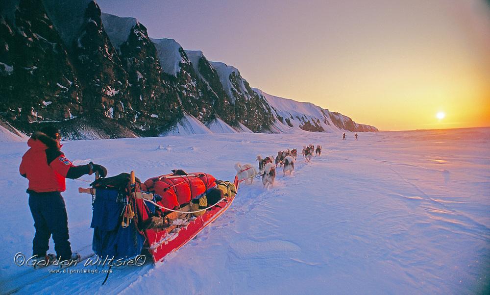 Explorer Will Steger mushes along frozen Arctic Ocean coast, Northwest Territories, Canada.