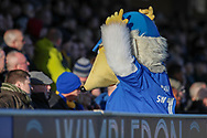 Haydon the Womble with hands in the air facing the crowd during the EFL Sky Bet League 1 match between AFC Wimbledon and Fleetwood Town at the Cherry Red Records Stadium, Kingston, England on 8 February 2020.