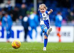 Mascot - Rogan/JMP - 03/02/2018 - FOOTBALL - Memorial Stadium - Bristol, England - Bristol Rovers v Shrewsbury Town - EFL Sky Bet League One.