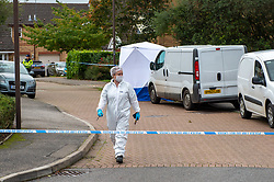 © Licensed to London News Pictures. 20/10/2019. Milton Keynes, UK. A forensic investigator walks on Archford Croft with a forensic tent in the background as police investigate the double murder of two 17-year-old boys. Thames Valley Police and South Central Ambulance Service were called to a property in Archford Croft, Emerson Valley, Milton Keynes, just before midnight following reports of a stabbing having taken place. Two adult males have also been injured in the incident. Photo credit: Peter Manning/LNP