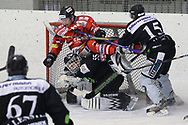 08.03.2011, Dielsdorf, Eishockey 2. Liga, Illnau - Chur, Ein Churer fliegt ueber den Goali von Illnau  (Thomas Oswald/hockeypics)