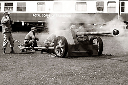 German PAK 38 Antitank Gun Fort Paull Bank Holiday Weekend<br /> <br />    07 May 2018 <br />   Copyright Paul David Drabble<br />   www.pauldaviddrabble.co.uk