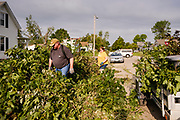 "12 AUGUST 2020 - SLATER, IOWA: SCOTT ALLEY and his wife, DEBBIE ALLEY, clean up debris from trees in their yard that were destroyed by the storm Monday. According to Iowa Governor Kim Reynolds, the storm damaged 10 million acres of corn and soybeans in Iowa, about 1 one-third of Iowa's 32 million acres of agricultural land. Justin Glisan, Iowa's state meteorologist, said the storm Monday, Aug. 10, lasted 14 hours and traveled 770 miles through the Midwest before losing strength in Ohio. The storm was a seldom seen ""derecho"" that packed straight line winds of nearly 100MPH. The storm pummelled Midwestern states from Nebraska to Ohio.     PHOTO BY JACK KURTZ"
