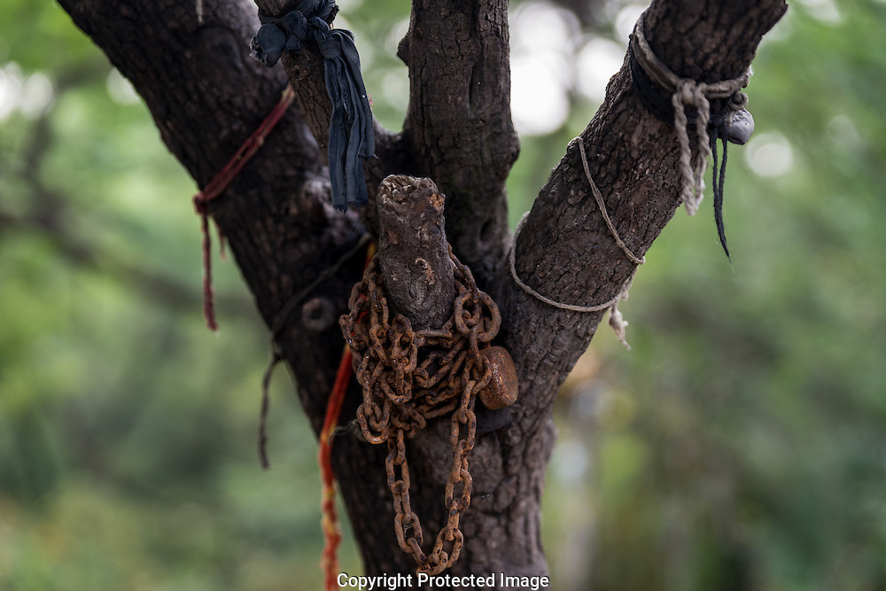 The caretaker would tie the  afflicted person by the hand to the chain and with the help of the Saint determine if the problem was one of mental health or the spirit. If the former he would instruct the family of the person to take them to hospital. <br /> <br /> Votives and bond chains and locks tried to the tree at the shrine