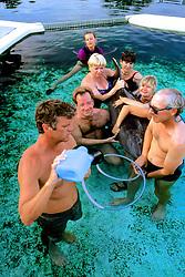 Tube Feeding Dolphin