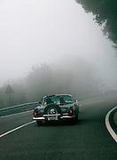 GP TAZIO NUVOLARI 2012.  FORD THUNDERBIRD  1956