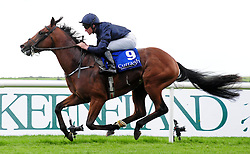 Utah and Seamus Heffernan wins the Anglesey Lodge Equine Hospital European Breeders Fund Maiden at Curragh Racecourse, Co. Kildare, Ireland.