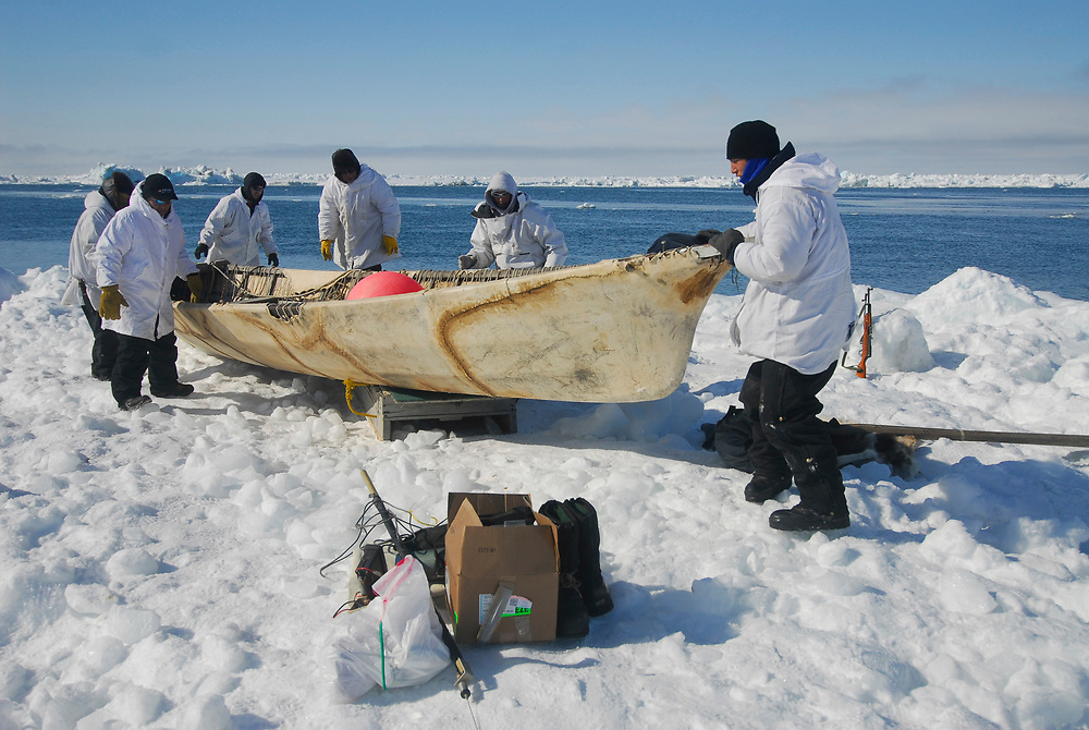 Alaska, Barrow. Whaler at whaling camp on the edge of the shorefast ice of the frozen Arctic ocean. Hopson Crew whaling camp. The crew set camp again after pulling out camp to safer ice due to ice floats and water current. (Model Release)