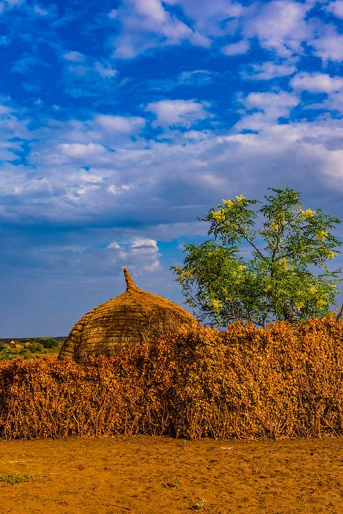 Nyangatom tribe village, Omo Valley, Ethiopia.