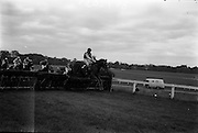 """10/05/1965<br /> 05/10/1965<br /> 10 May 1965<br /> Mr. T. McCairn's """"Peter's Town"""" clears the last hurdle to win the Castella Maiden Hurdle at the Leopardstown Races on May 10, 1965."""