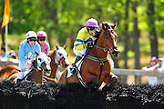 April 7, 2012 - Richard Boucher and American Crossing lead over the first in the Stoneybrook Chase hurdle at Stoneybrook Steeplechase, Raeford NC