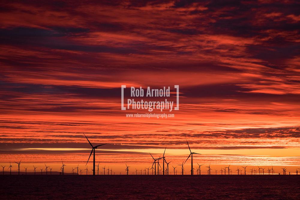 A dramatic sunrise over the Walney Offshore Wind Farm off the coast of Cumbria, UK