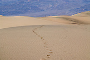 A couple walking in the distance along the sand dunes in Death Valley National Park in California.