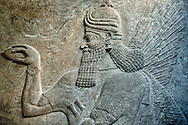 Assyrian relief sculpture panel  of a protective spirits,  from Nimrud, Iraq.  The spirit is holding a symbolic fir cone and is sprinkling holy water. 865-860 B.C North West Palace, Room G, door e, panel 1.  British Museum Assyrian  Archaeological exhibit  ref WA 124586 .<br /> <br /> If you prefer to buy from our ALAMY PHOTO LIBRARY  Collection visit : https://www.alamy.com/portfolio/paul-williams-funkystock/ancient-assyria-antiquities.html  Refine search by adding background colour, place, subject, museum etc into the LOWER SEARCH WITHIN GALLERY box to <br /> <br /> Visit our ANCIENT ASSYRIAN PHOTO COLLECTIONS for more photos to download or buy as wall art prints https://funkystock.photoshelter.com/gallery-collection/Ancient-Assyrian-Art-Artefacts-Antiquities-Historic-Sites-Pictures-Images-of/C0000cjRqQyJjLag