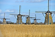 Nederland, the netherlands, Kinderdijk, 30-3-2016Bij kinderdijk staat een van de grootste toeristische bezienswaardigheden van Nederland, de windmolens die de polders droog hielden voordat gemechaniseerde gemalen dat deden. FOTO: FLIP FRANSSEN/ HH