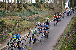 Peloton continues to stream through the narrow country lanes only room for two riders abreast - 2016 Omloop van het Hageland - Tielt-Winge, a 129km road race starting and finishing in Tielt-Winge, on February 28, 2016 in Vlaams-Brabant, Belgium.