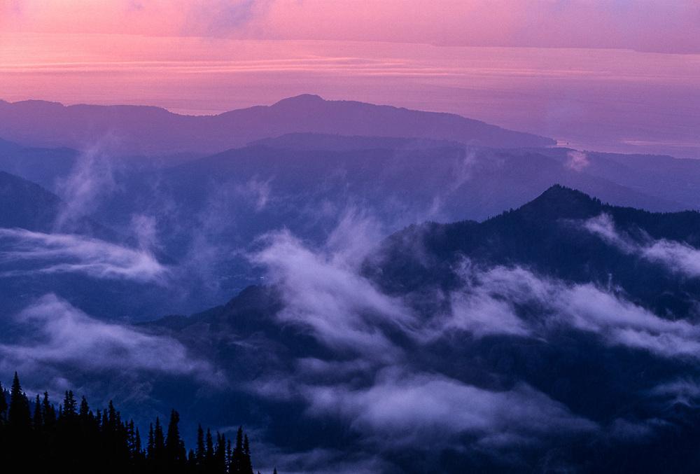 Viewv from Hurricane Hill, evening light, Olympic National Park, Washington, USA