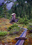 Forest Service outhouse behind public use cabin at Big Goat Lake, Misty Fiords National Monument, Alaska.