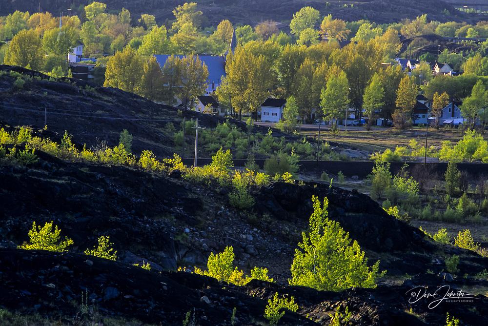 Spring foliage emerging in aspens on Copper Cliff Barrens, with town of Copper Cliff, Copper Cliff, Ontario, Canada