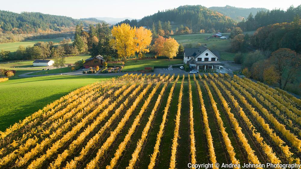 Beacon Hill family & fall colors, Yamhill-Carlton AVA, Willamette Valley, Oregon