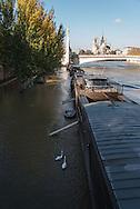 France. Paris. 5th district.  left bank, Quai de la Tournelle and Seine river,/ crue de la Seine et inondation des quais