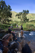 Naalapa Stables, Horseback riding, Waipio Valley, Hamakua Coast, Island of Hawaii