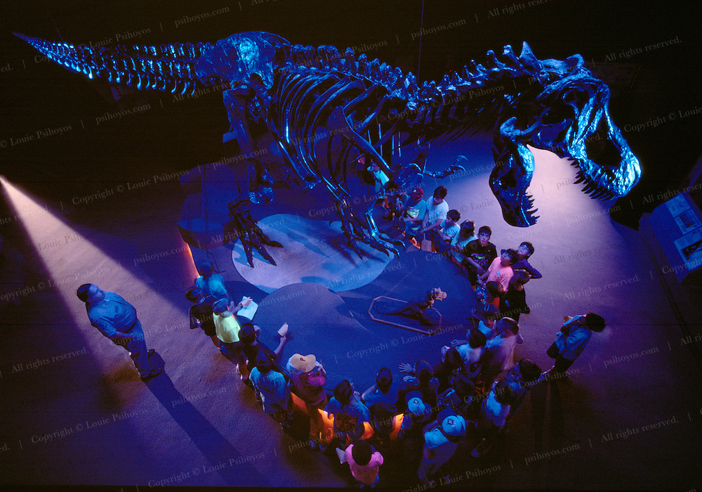 This specimen lives at the Philadelphia Academy of Natural Sciences in Pennsylvania.  School children come to the museum to get experiential learning.