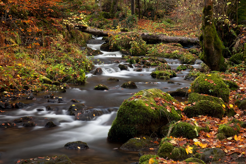Lower part of the Cascade Chiloza, Besse en Chandesse, Auvergne, France