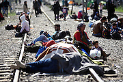 March 1, 2016 - Athens, Greece - <br /> <br /> Refugees at the Greek-Macedonian border, in the northern Greek village of Idomeni. Some 7,000 migrants, including many from Syria and Iraq, are crammed into a tiny camp at the Greek border village of Idomeni, and hundreds more are arriving daily. <br /> ©Exclusivepix Media