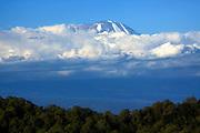 View of Kilimanjaro mountain, Africa, Tanzania,