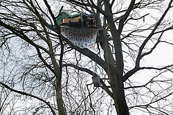 Harefield, UK. 3 February, 2020. An activist hauls up a wood burner to a treehouse high up in a tree at the woodland camp section of Harvil Road wildlife protection camp. Environmental activists from Save Colne Valley and Extinction Rebellion are seeking to prevent construction works for the HS2 high-speed rail link in the Colne Valley which would require the felling of hundreds of mature trees.