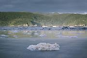 Sea foam and sandy beach in Doughboy Bay, The Southern Circuit, Stewart Island / Rakiura, New Zealand Ⓒ Davis Ulands | davisulands.com
