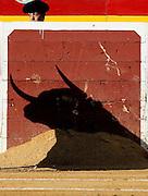 V. 13. Valencia, 20/07/06. La sombra del toro se proyecta sobre el buraladero tras el cual aguarda un subalterno durante la corrida de toros celebrada hoy en el coso valenciano con motivo de la feria de Julio. EFE/Kai Försterling